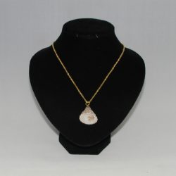 Brown Cone Shell Gold Chain Pendant