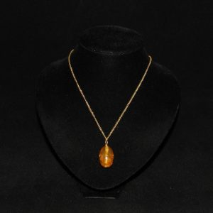 Amber Fossil Pendant Gold Chain Necklace